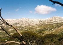 Mt Lee & Mt Carruthers, Main Range NSW