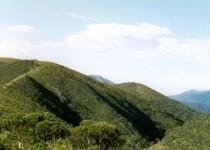 The Razorback, Mt Hotham VIC