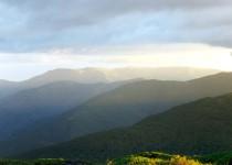 Mt Bogong, Alpine NP VIC