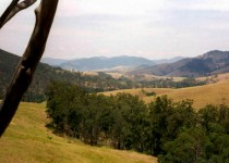 Barnard Valley, NSW
