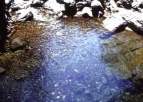 Maruin Creek, Bindook Highlands NSW