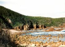 Red Cliffs, Tomaree NP NSW